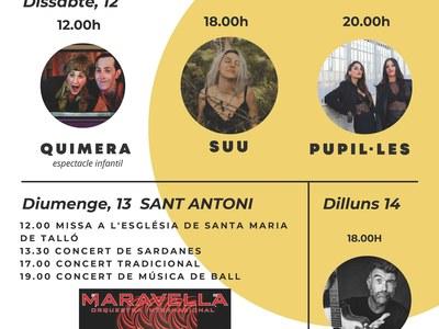 Concerts Sant Antoni