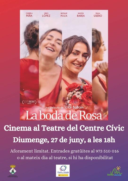 Cine La boda de Rosa.jpg